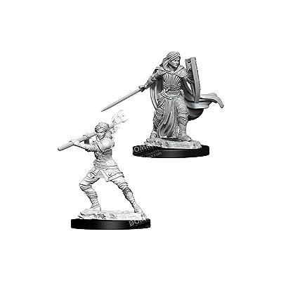 Nolzur's Marvelous Miniatures Wizkids - D&D Human Female Paladin - WZK73830: Toys & Games
