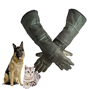 DAN Animal Handling Gloves Cat Dog Bird Snake Parrot Lizard,Anti-bite/Scratch Gardening Wild Animals Protection Gloves
