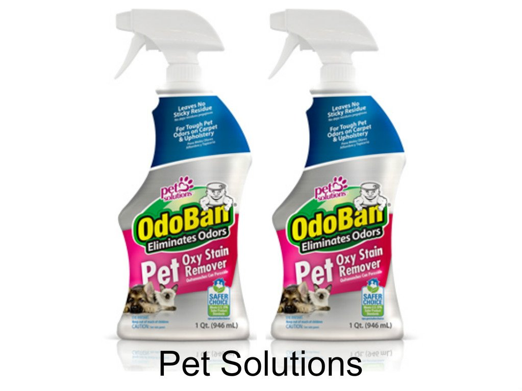 OdoBan Pet Oxy Stain Remover, 32 Fl. Oz. (12 Pack)