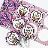 BirthdayExpress Owl Party Supplies - Lollipop Favor Kit