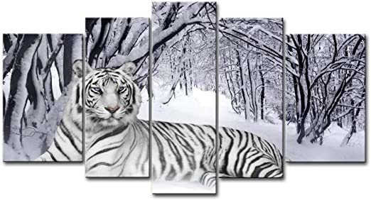TIGER SQUARE CANVAS ART WALL PICTURE BEAUTIFUL L 20x20/""