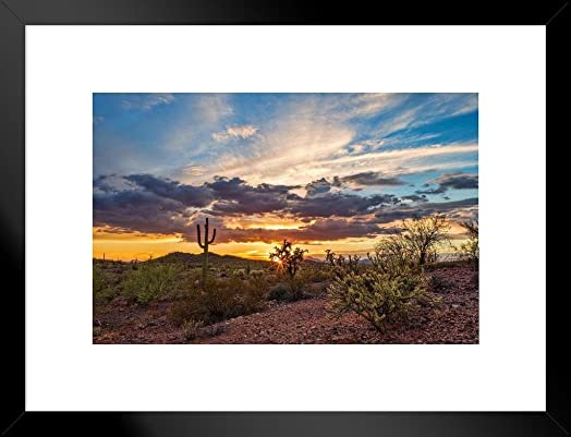 Poster Foundry Colorful Sonoran Desert Sunset