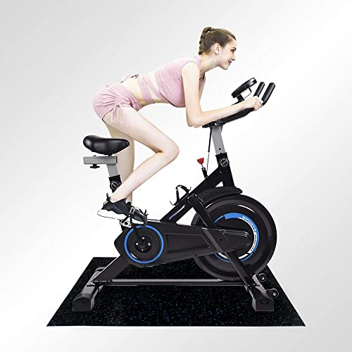 Puluomis Indoor Cycling Bike Exercise Spin Bicycle Stationary Bike