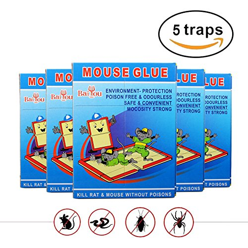 WINCAN 5 Pcs Butter Scented Humane Mouse and Insect Glue Boards Rat Trap Mice Pest Snake Sticky Traps Bulk with Professional Strength Glue for Indoor or Outdoor (blue) (Quick Homemade Costumes)