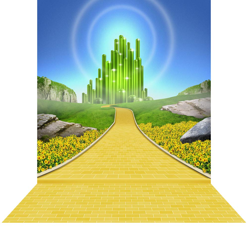 Alba Creative Photography Backdrop with Floor - Emerald City - Seamless Fabric Background (10 x 20)