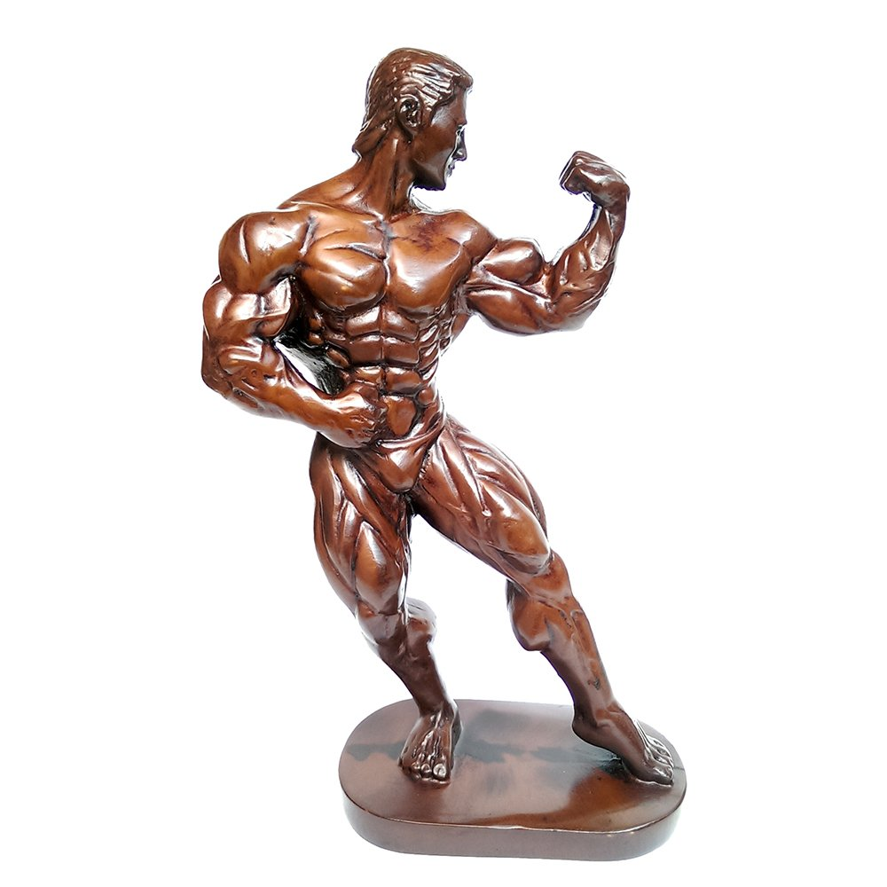 Amazon.com: Male Bodybuilder Resin Statue Men Sexy Fitness Gym ...