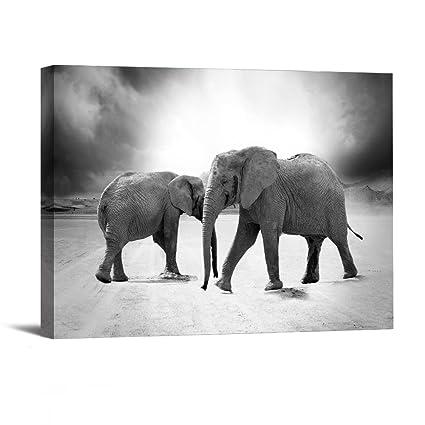 Amazon.com: 1 Piece With Framed Prints Artwork Elephant Animal ...