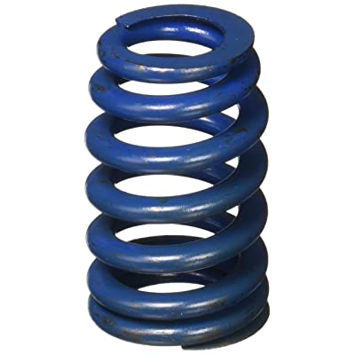 GM Parts 12499224 Valve Spring for LS1 Engine: Automotive [5Bkhe0412725]