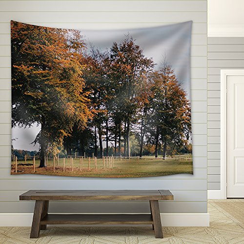 Landscape of Countryside with Trees Fabric Wall Tapestry
