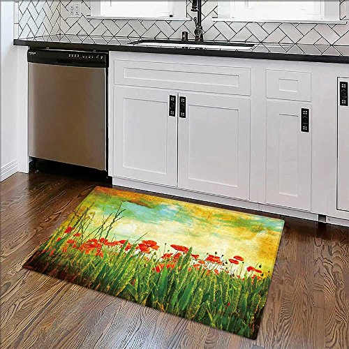 Non-slip Thicken Carpet Grungy background with poppies Easier to Dry for Bathroom W24'' x H16'' by Auraise Home