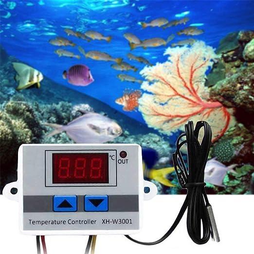 DollaTek XH-W3001 24V Digitale Temperaturregler Qualit/ät Thermische Regler Thermoelement Thermostat mit LCD Display