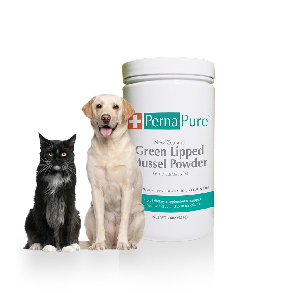 PernaPure 16oz Jar Green Lipped Mussel Powder - Canine, Feline, Equine Joint Health Supplement - New Zealand Freeze Dried 100% Pure