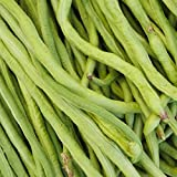 California Black-Eye Bush Beans - 50 Lb Bulk - Non-GMO, Heirloom - Black-Eyed Peas (Cowpeas) - Vegetable Garden Seeds