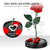 Unomor Rose Gift for Valentine's Day Holiday Party