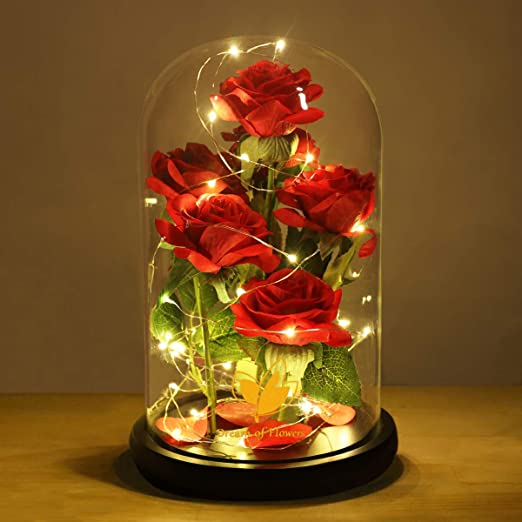 Romantic Beauty And The Beast Red Rose Glass Dome Led Llight Valentine/'s Gifts