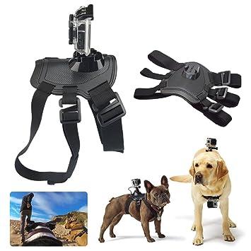 Donkeyphone - Soporte para Perros: Amazon.es: Electrónica