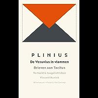 De Vesuvius in vlammen