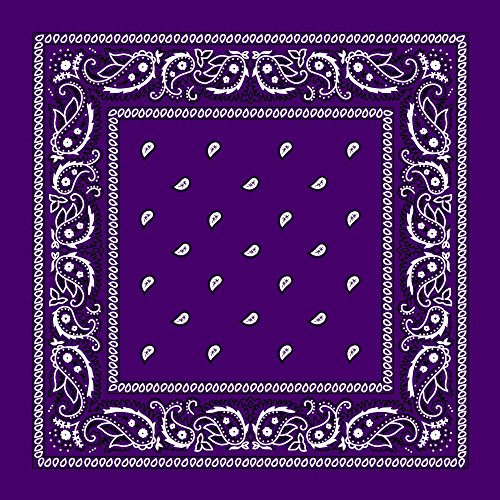 Purple Paisley Bandana - Single Piece 22x22