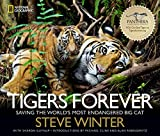 img - for Tigers Forever: Saving the World's Most Endangered Big Cat book / textbook / text book