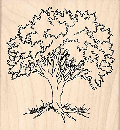 Tree Rubber Stamp - 3 x 3.25 Stamps by Impression