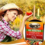 Heirloom-Seeds-Survival-Kit-25-Year-Storage-Life-85-Germination-Success-For-Doomsday-Preparedness-Peace-of-Mind-30-Caliber-Ammo-Vault-for-Best-Protection-of-Fruit-Herb-and-Vegetable-Seed