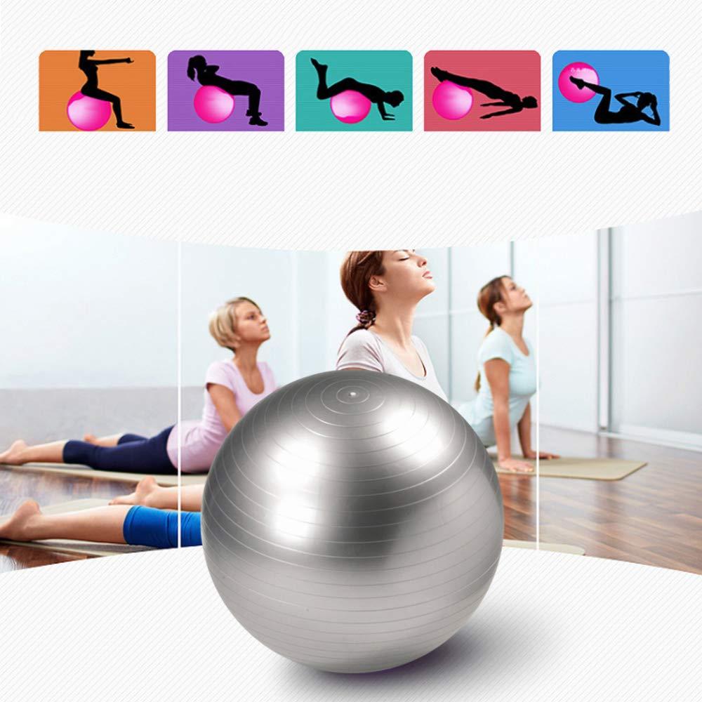 L/'anti Palestra di esercizio della palla di yoga della palla di yoga della