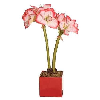 Amazon vco 23 artificial coral pink and white amaryllis silk vco 23quot artificial coral pink and white amaryllis silk flower arrangement mightylinksfo
