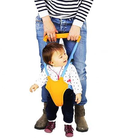 Bebe – Tirantes para los primeros pasos del bebé, alternativa ...