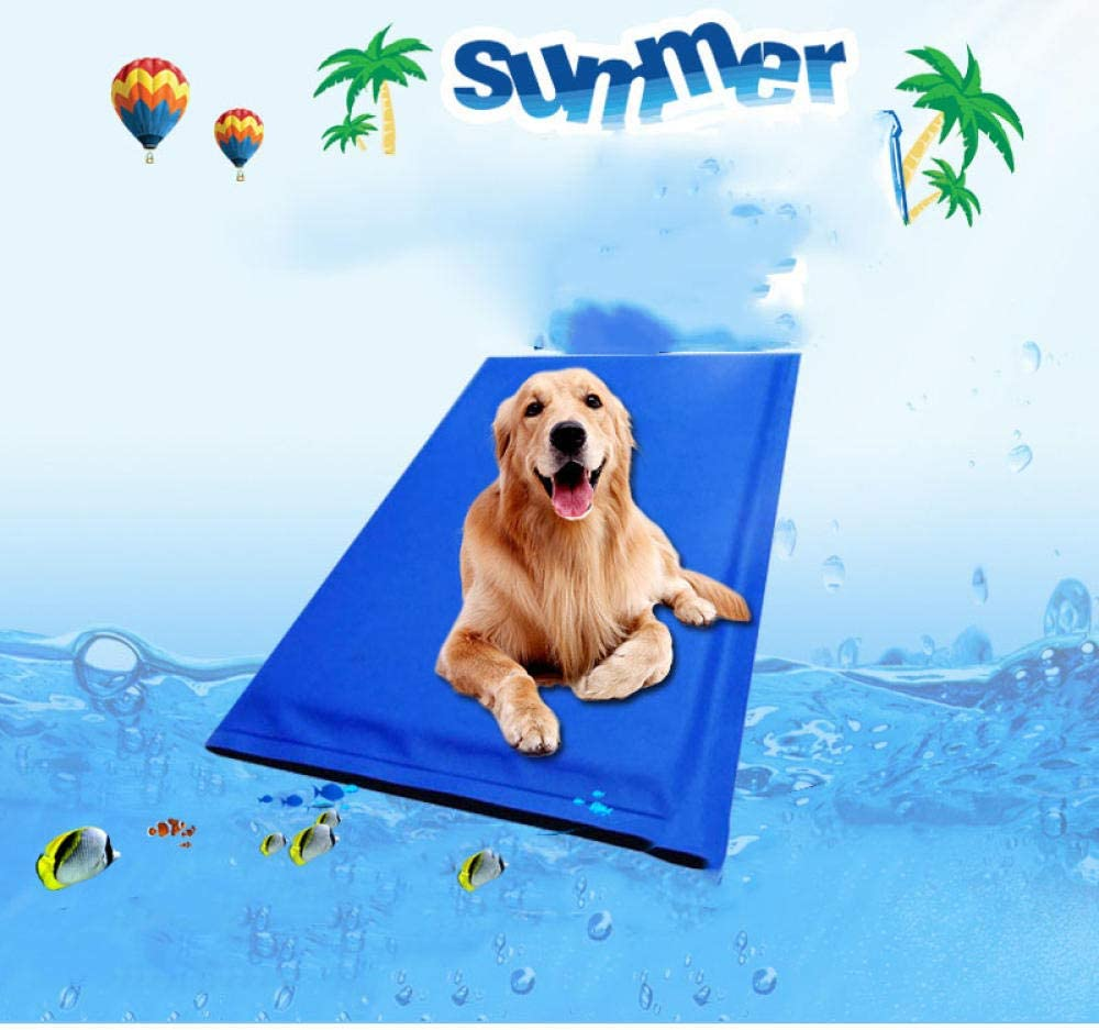 Promworld Pet Ice Mat Dog Cool Pad para Cajas, perreras y Cama, Pet Ice pad-60 * 50cm, Mat Pad Bed Colchón Alivio del Calor no tóxico