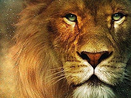 Amazon com: Rainbow Snail Canvas Prints - Aslan, The Narnia Lion Oil