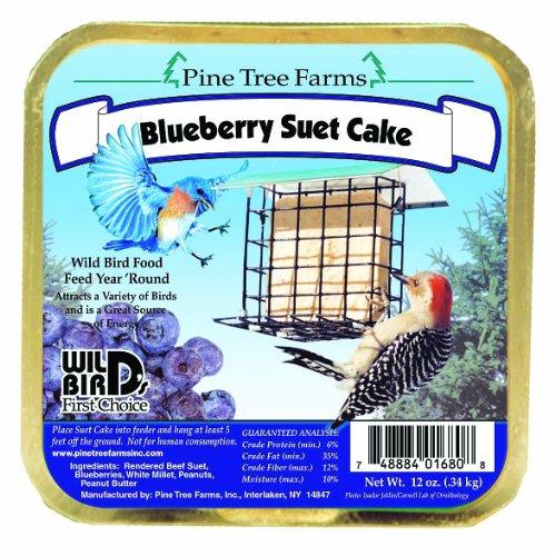 12-oz-Blueberry-Suet-Cake