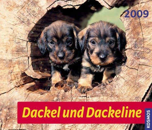 Dackel und Dackeline 2009