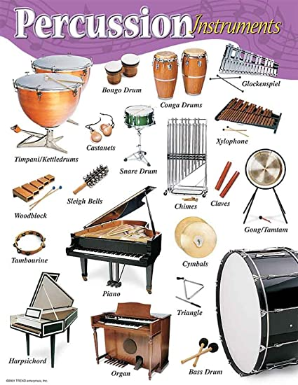 amazon com music treasures co percussion instruments poster pack