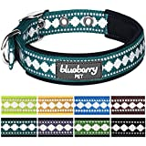 """Blueberry Pet Collars for Dogs 1"""" Large Neoprene Padded Dog Collar in Teal Blue with Jacquard Pattern, Matching Leash & Harness Available Separately"""
