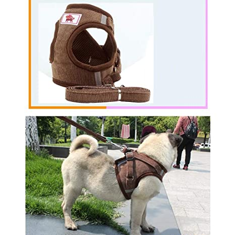 MDD Salga a dar un paseo y entrene a su mascota Chaleco-correa ...