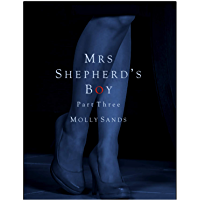 Mrs Shepherd's Boy - Part Three (English Edition)