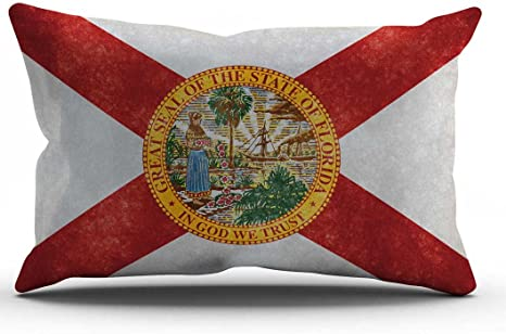 Amazon Com Decopow Retro Florida State Flag Pillow Cover Florida State Flag Throw Pillow Covers 12 X 20 Florida 1220 Home Kitchen