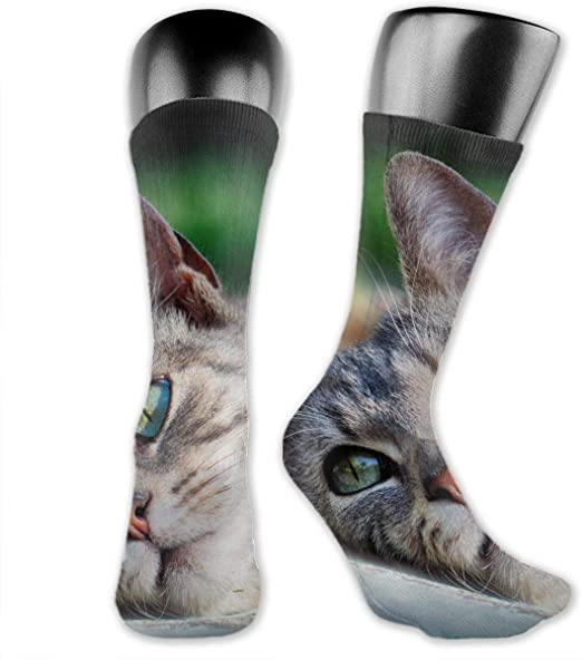 OLGCZM Cute Cat Men Womens Thin High Ankle Casual Socks Fit Outdoor Hiking Trail