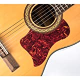 Canomo Pack of 9 Self Adhesive Acoustic Guitar