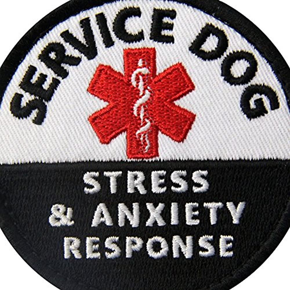 Service Dog in Training Vests/Harnesses Patch Embroidered Badge ...