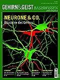 Neurone & Co.: Bausteine des Gehirns (Gehirn&Geist Basiswissen)