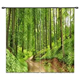 LB 2 Panels Room Darkening Blackout Curtains,The Green Woods 3D Effect Print Window Treatment Living Room Bedroom Window Drapes,28 by 65 inch Length