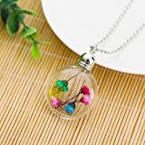 Fashion Real Dried Flower Crystal Glass Bottle Sweater Chain Pendant Necklace