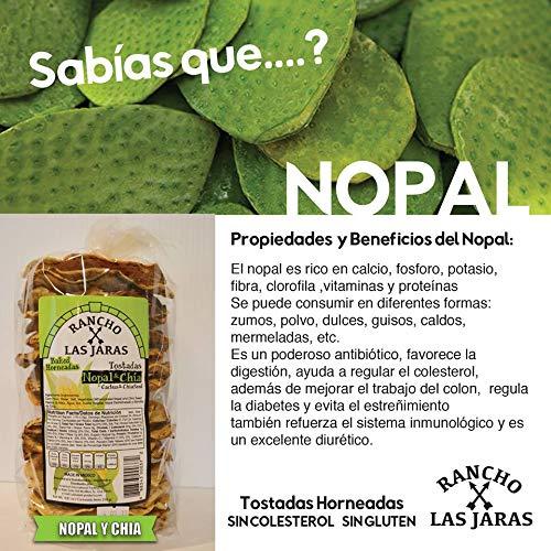 Rancho Las Jaras Tostadas Horneadas Nopal Y Chia.: Amazon.com: Grocery & Gourmet Food