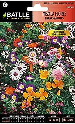 Semillas de Flores - Mezcla de Flores enanas anuales - Batlle ...