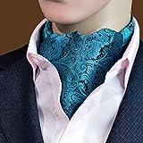 MENDENG Mens Blue Red Black Paisley Jacquard Woven Self Cravat Silk Tie Ascot