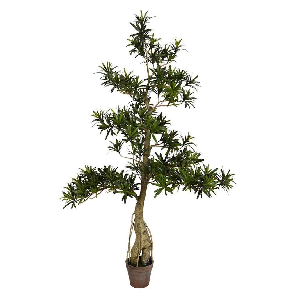 Vickerman TB180848 Green Potted Podocarpus Everyday Tree