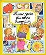 L'imagerie du corps humain par Simon