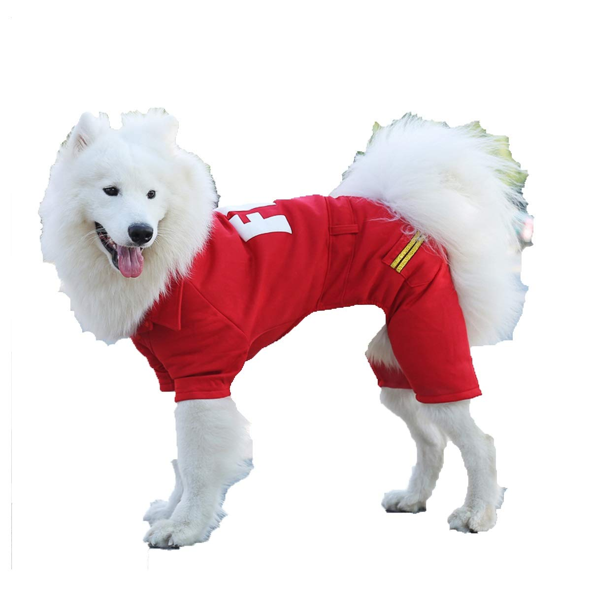 Dog Clothing, Winter, Labrador, golden Retriever, Samoyed, Medium to Large Dogs, Autumn and Winter Four-Legged Clothing (color   Red(Believe), Size   4XL)