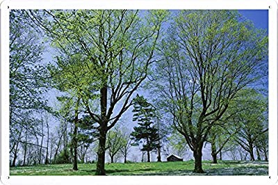 "Planet Scene Poster - Spring Meadow Lexington Kentucky Tin Sign (8""x12"")"